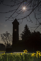 Spring Eclipse (DazaT) Tags: uk sky sun moon silhouette eclipse spring branches clocktower staffordshire daffodils lichfield
