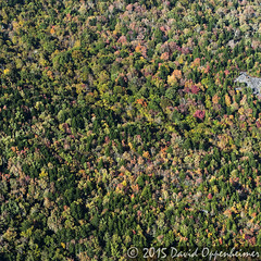 Aerial Photo of Fall Colors on the Blue Ridge Parkway (Performance Impressions LLC) Tags: autumn trees usa mountains fall colors unitedstates fallcolors northcarolina aerial autumncolors aerialphoto blueridgemountains blueridgeparkway appalachianmountains wnc pisgahnationalforest 12144959662
