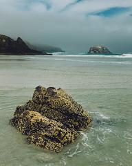 Allans Beach (www.jamespartridge.photo) Tags: ocean cruise sea newzealand sky cloud beach rock dark waves stormy crest otago dunedin tasman peninsula allans celebritysolstice
