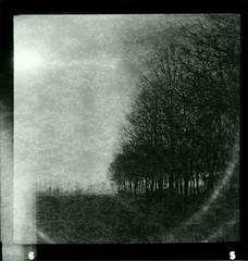 Daylight Fireflyes (----> Exposed) Tags: venice film self vintage dark landscape 4x4 time room s d76 127 negative damage 100 asa process expired alteration v700 r21 ekfe luxette
