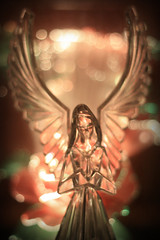 Christmas Angel (Jillian Kern) Tags: christmas rose angel ligh