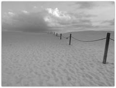 eba (vanKuso (Dominik Starosz)) Tags: beach sand dunes poland polska baltic sanddunes leba batyk morzebatyckie pomorze eba wydmy polskapustynia