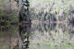 Chittenden, Vermont - 5/23/16 (myvreni) Tags: nature landscape outdoors spring pond vermont