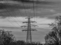 Lines (Stanlin) Tags: nature lines power greyscale topw