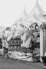 #feria #games #expo #teddybear #obregon #sonora #mexico #cajeme #canon #70d #ef24105 (MARTINEZ PHOTOGRAPY) Tags: sonora canon mexico expo feria games teddybear obregon cajeme 70d ef24105