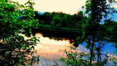 Rogue River Sunset (neukomment) Tags: railstotrail sunset reflection river puremichigan whitepinetrail michigan westmichigan hiking usa