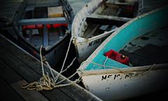 skiffs (jtr27) Tags: canon 50mm harbor f14 sony maine newengland rowboat alpha skiff manualfocus a7 ilc csc fd pinepoint alpha7 nfd fdn mirrorless jtr27 ilce7 dsc02176e