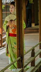 Kennin-ji: The Oldest Zen Temple in Kyoto! (KyotoDreamTrips) Tags: japan kyoto maiko zenbuddhism kenninji    myaneisai