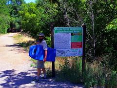 Surf's up on the Jail Trail! (EllenJo) Tags: pentax cottonwoodarizona 2016 june19 jailtrail 86326 ellenjo ellenjoroberts pentaxqs1
