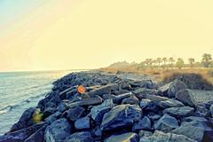 Playa. Punta del Moral (Huelva) (Angela Garcia C) Tags: playa turismo urbano hidrologa vegetacin huelva geografafsica puntadelmoral relieve orografa ocanoatlntico oleaje rocas geografaurbana urbanismo arena