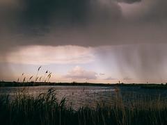 Hard Rain (rm005759) Tags: travel summer sky lake water rain clouds shower spikes vsco shotoniphone vscofilm