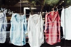 Cmo tener camisetas suaves? (revistaeducacionvirtual) Tags: estilo prendas ropa camisetas lavadora piel algodon lavado suavidad detergente poliester secadora aguaysal aguayvinagre