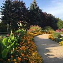 Poland, Wroclaw Botanical Garden (David N. Berger) Tags: garden flowers poland wroclaw capitalofculture university botany beautiful gorgeous relaxing walks variety
