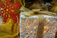 Christmas decorative box (Victor Wong (sfe-co2)) Tags: christmas xmas red holiday color macro green yellow closeup festive season idea golden warm symbol box decorative celebration gifts ornament gift icicle present ribbon tungsten concept tradition netting decor package icecrystal artandcraft