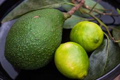 Cornucopia (ArneKaiser) Tags: avogado citrus lemon stillife