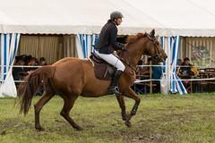 DSC02310_s (AndiP66) Tags: martinameyer grueb wolhusen luzern concourshippique springen thrigen 2016 11juni2016 juni pferd horse schweiz switzerland kantonbern cantonberne concours wettbewerb horsejumping equestrian sports springreiten pferdespringen pferdesport sport sony sonyalpha 77markii 77ii 77m2 a77ii alpha ilca77m2 slta77ii sony70400mm f456 sony70400mmf456gssmii sal70400g2 andreaspeters bern ch