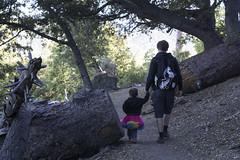 Fathers Day Hike (evaxebra) Tags: