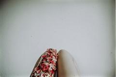 flowers.on.my.skin. (dieFlow) Tags: flowers rot analog self naturallight indoor selbstportrait beine blten hortensie