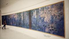 Summer shades (Mister Blur) Tags: blue summer panorama paris water museum nikon shades muse lilies monet verano panormica lorangerie d7100