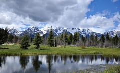 GTY_0569 (Kerri M.) Tags: wyoming grandtetonnationalpark schwabacherlanding nationalparks tetons tetonrange grandteton landscape mountain