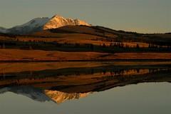 Reflecting on Yellowstone (Wayne Nelson) Tags: reflections images mirrored wyoming yellowstonenp waynenelson