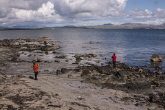 Islay 2016 2 (17) (Yorkshire Reckless & Proud) Tags: blue shadow sea people musician cloud sun lighthouse black bird beach birds silhouette vw landscape scotland boat ship harbour cottage sails tent islay seal duster van camper distillery orsay bowmore bruichladdich dacia