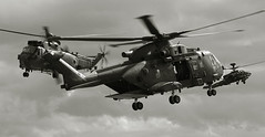 Flashing blades (crusader752) Tags: bw monochrome mono blackwhite chopper apache attack formation helicopter merlin boeing helicopters finale wildcat westland lynx commando choppers aac rn seaking royalnavy armyaircorps 2015 royalmarines setpiece agustawestland rnasyeovilton airfieldassault