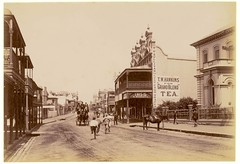 High Street, West Maitland, N.S.W. (maitland.city library) Tags: maitland newsouthwales state library high street hawkins tea sullivan cheap cash draper bank horse drawn vehicles cappers buildings shops streetscapes