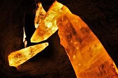 Gem Rock20140401_662 (gsas777) Tags: amber gem stones dinosaur skeleton old jurassic park fossil purple amethyst fish
