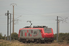 BB 37017 VFLI / Loon-Plage