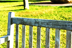 No olvidado. (Steffyreina) Tags: sunset color verde green grass canon dead chair perfect colorful flickr message places historic silla gift contraste montauk mensaje perfeccion unfotgettable