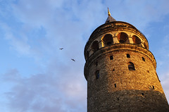Galata tower (Gregor  Samsa) Tags: city light sunset seagulls tower stone turkey evening town afternoon stones seagull illumination istanbul galata kulesi galatatower galatakulesi