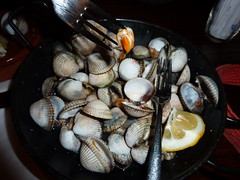 Cockles (no mussels) (bikerchisp) Tags: food spain galicia santiagodecompostela pilgrimroute