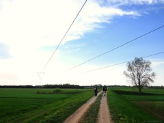paths (JoannaRB2009) Tags: road blue trees sky green nature grass clouds river walking landscape countryside spring flat path sony relaxing meadows poland polska fields warta uniejw hx100v sonyhx100v