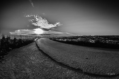 end of the day in Gozo #1 (Jack_from_Paris) Tags: jpr3723d800ebw nikon d800e nikkorfisheyeais2816mm 16mm fisheye f110 noiretblanc monochrom uga wide angle bw end day landscape nature route road malte malta gozo comino virage curve nuage cloud soleil couchant sun paysage postcard serénité blackandwhite monochrome