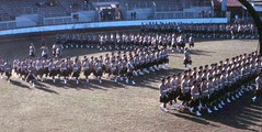 Transvaal Scottish Regiment, Trooping the colour 1969 (scotmilpics) Tags: african military scottish parades soldiers uniforms kilts drummers pipers tartan south army africa scottish regiments transvaal