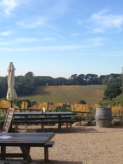 Wine Tasting (Matthew Armstrong) Tags: wine winetasting morningtonpeninsula wineries