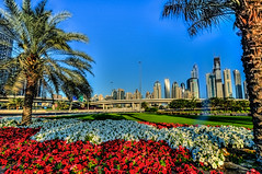 Greetings from Dubai (Swissrock) Tags: city urban flower skyline march nikon dubai uae 2013 d700 andykobel