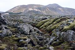 Icelandic landscape (josche) Tags: mountain berg rock landscape island lava iceland rocks berge fels landschaft moos felsen icelandic