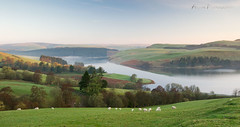 Photo of Morning Clywedog