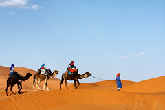 Sunset Camel Trek in the Sahara (nep000) Tags: africa travel sunset sahara desert northafrica dunes safari camel morocco berber maroc touareg merzouga ergchebbi almaghrib