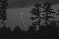 Lightning and Trees (skippyclese) Tags: trees blackandwhite bw night clouds lightning