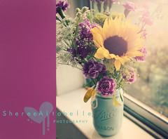 (Sheree Altobelle) Tags: flowers nikon painted mason sunflower jar d700 feelincrafty