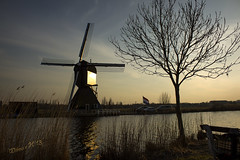 Going for Gold (Wilma van H - thanks for all your lovely comments!) Tags: holland nederland thenetherlands sunsets windmills kinderdijk windmolens albasserwaard albasserdam