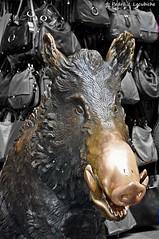 Firenze:  Il porcellino (Perikolo) Tags: fuente mercado florencia mercato fontana nuevo nou mercat porcellino nuovo firence