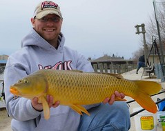 Jeff scores another Sheboygan RIver carp (Dan Small Outdoors) Tags: carp sheboygan carpfishing sheboyganriver dansmall jeffkelm outdoorsradio