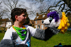 AylesFur_MG_10033 (Mikepaws) Tags: england dog up animal town costume furry husky wolf buxton walk buckinghamshire dressing fox cuddly april aylesbury farley fandom bloo furs anthro fursuit 2013 volf