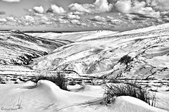 cheviots (troodles3) Tags: snow mountains landscape blackwhite hills cheviots cheviot