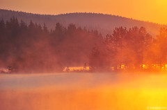 elements (.:: Maya ::.) Tags: mist lake nature sunrise bulgaria  rodopi  rhodope    beglika
