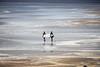 Surfers Paradise in Ireland (diwan) Tags: ireland beach canon geotagged eos place irland windsurfing atlanticocean lahinch watersport countyclare republicofireland éire 2013 anleacht leachtuíchonchubhair poblachtnahéireann liscannorbay canoneos650d geo:lon=9352498 geo:lat=52935940 leachtuíchonchúir